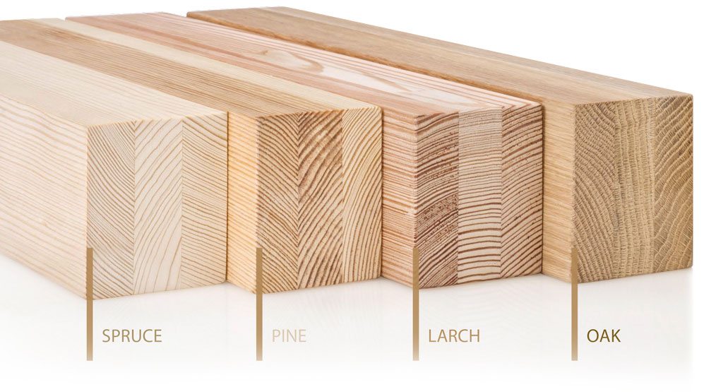 sample cross sections of spruce, pine, larch and oak timber types